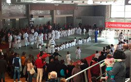 Festival Solidario de Judo